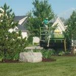 HOA Common Area Planting