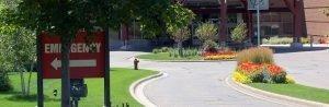 Landscape Maintenance - Horticulture Services