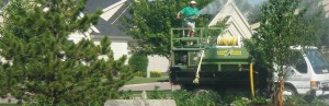 Landscape Renovation - Horticulture Services