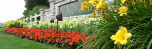 Seasonal Color - Horticulture Services