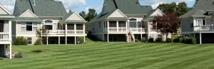 Turf Maintenance - Horticulture Services