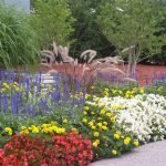 Mixed Annual and Perennial Garden