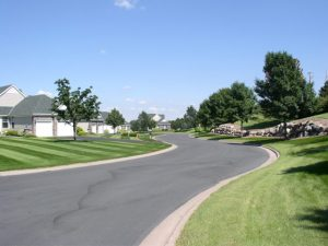 Overview-no-mulch-rings