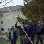 Tree Trimming Education 2