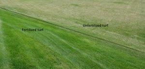 Fertilized vs. unfertilized Waterside West