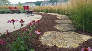Thin mulch after